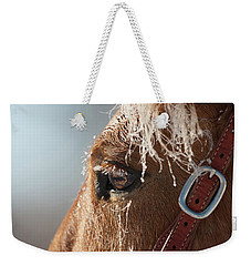 Winter Mustang Eye Weekender Tote Bag