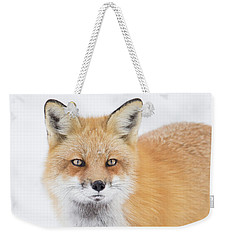 Weekender Tote Bag featuring the photograph Winter Portrait by Mircea Costina Photography