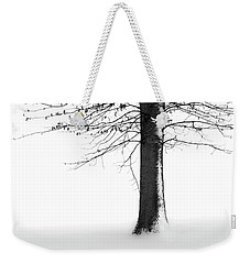 Winter Solitude Weekender Tote Bag