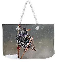 Winter Starling 2 Weekender Tote Bag