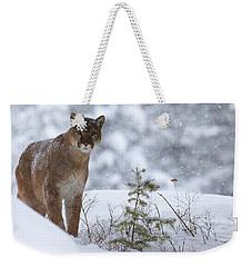 Winter Storm Weekender Tote Bag by Steve McKinzie