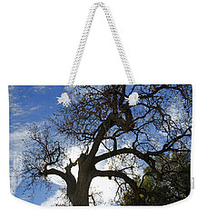 Weekender Tote Bag featuring the pyrography Winter Tree by Shoal Hollingsworth