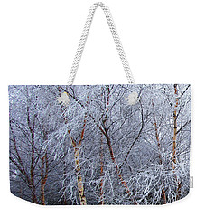 Weekender Tote Bag featuring the photograph Winter Trees by Jacqi Elmslie