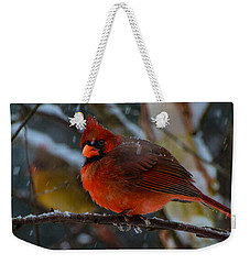 Weekender Tote Bag featuring the photograph Winter Twosome  by John Harding