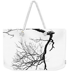 Weekender Tote Bag featuring the photograph Wintered Over by Skip Willits