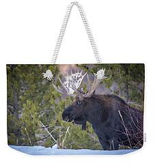 Winter's Arrival  Weekender Tote Bag