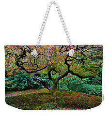 Weekender Tote Bag featuring the photograph Wisdom Tree by Jonathan Davison