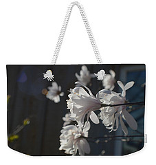 Weekender Tote Bag featuring the photograph Wipsy Mini Magnolias by Tina M Wenger