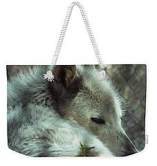 Wolf At Rest Weekender Tote Bag