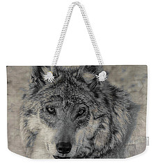 Weekender Tote Bag featuring the photograph Wolf Painted by Elaine Malott