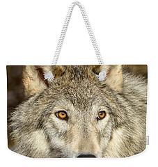 Wolf Portrait Weekender Tote Bag by Jack Bell