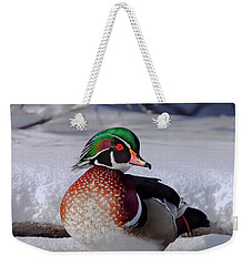 Wood Duck In Winter Snow And Ice, Montana, Usa Weekender Tote Bag