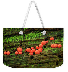 Wood Fungus Weekender Tote Bag