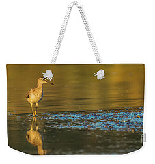 Weekender Tote Bag featuring the photograph Wood Sandpiper At Sunset by Jivko Nakev