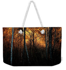 Weekender Tote Bag featuring the photograph Woodland Illuminated by Bruce Patrick Smith