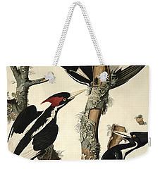 Woodpecker Weekender Tote Bag by John James Audubon
