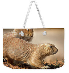 Weekender Tote Bag featuring the photograph Worried Prairie Dog by Robert Frederick