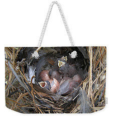 Weekender Tote Bag featuring the photograph Wren Babies by Angie Rea