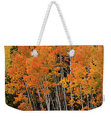 Wyoming Splendor Weekender Tote Bag