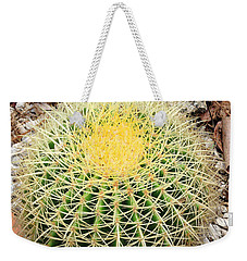 Weekender Tote Bag featuring the photograph Xerophyte by Rosalie Scanlon