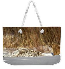 Yampa Glare  Weekender Tote Bag