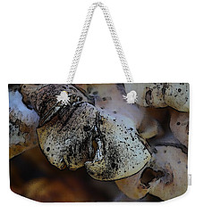 Weekender Tote Bag featuring the photograph Yard Mushrooms by Richard Ricci