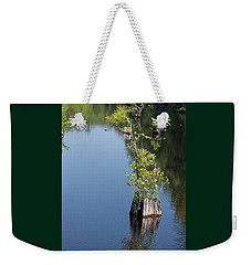 Weekender Tote Bag featuring the photograph Yawkey Wildlife Refuge - Cat Island by Suzanne Gaff