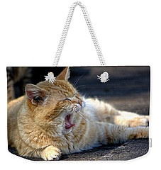 Weekender Tote Bag featuring the photograph Yawning by Chriss Pagani