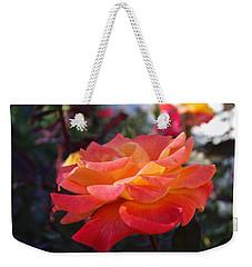 Yellow And Pink Rose Weekender Tote Bag