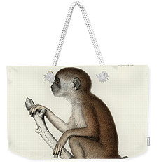 Yellow Baboon, Papio Cynocephalus Weekender Tote Bag