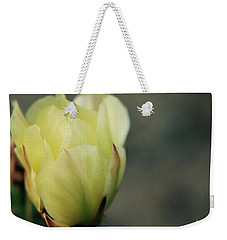 Weekender Tote Bag featuring the photograph Yellow Beauty by Amee Cave