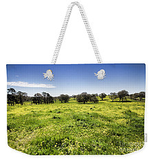 Weekender Tote Bag featuring the photograph Yellow Blanket by Douglas Barnard