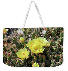 Weekender Tote Bag featuring the photograph Yellow Cactus Blooms by Ann E Robson