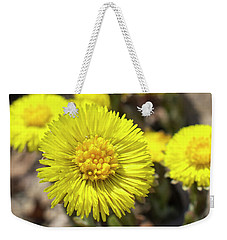 Weekender Tote Bag featuring the photograph Yellow Coltsfoot Flowers by Christina Rollo