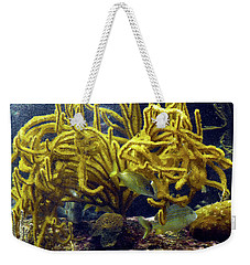 Weekender Tote Bag featuring the photograph Yellow Coral Dance by Francesca Mackenney