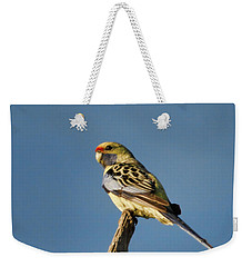 Weekender Tote Bag featuring the photograph Yellow Crimson Rosella by Douglas Barnard