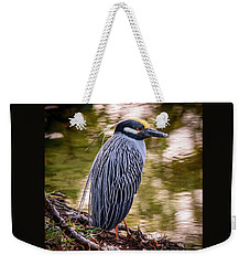 Weekender Tote Bag featuring the photograph Yellow-crowned Night-heron by Steven Sparks