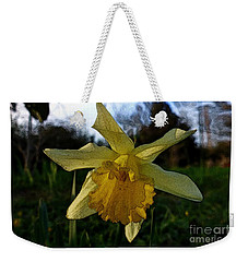 Yellow Daffodils 5 Weekender Tote Bag by Jean Bernard Roussilhe