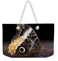 Yellow-edged Giant Owl Butterfly Weekender Tote Bag