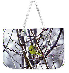 Weekender Tote Bag featuring the photograph Yellow Finch by Bonnie Muir