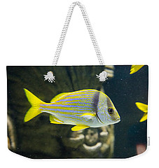 Yellow Fish Weekender Tote Bag