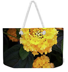 Weekender Tote Bag featuring the photograph Yellow Lantanas Along The Scenic Drive by Mr Photojimsf