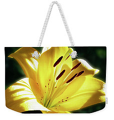Yellow Lily In Sunlight Weekender Tote Bag