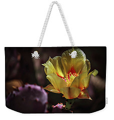 Weekender Tote Bag featuring the photograph Yellow N Red by Elaine Malott