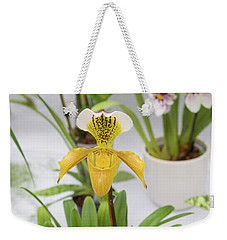 Weekender Tote Bag featuring the photograph Yellow Orchid Closeup by Hans Engbers