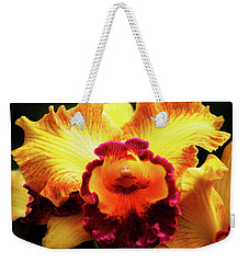 Weekender Tote Bag featuring the photograph Yellow-purple Orchid by Anthony Jones