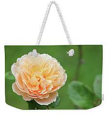 Yellow Rose In December Weekender Tote Bag by Kelly Hazel