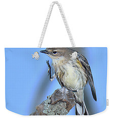 Yellow-rumped Warbler Itch Weekender Tote Bag by Alan Lenk