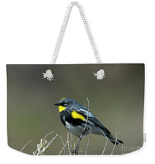 Weekender Tote Bag featuring the photograph Yellow-rumped Warbler by Mike Dawson