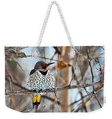 Yellow-shafted Northern Flicker Staying Warm Weekender Tote Bag